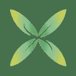 logo_X_pittogramma